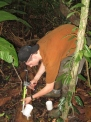 Riley attaching a respirometry collar to dead wood