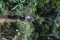 Surveying lightning damage with Riley Kneale